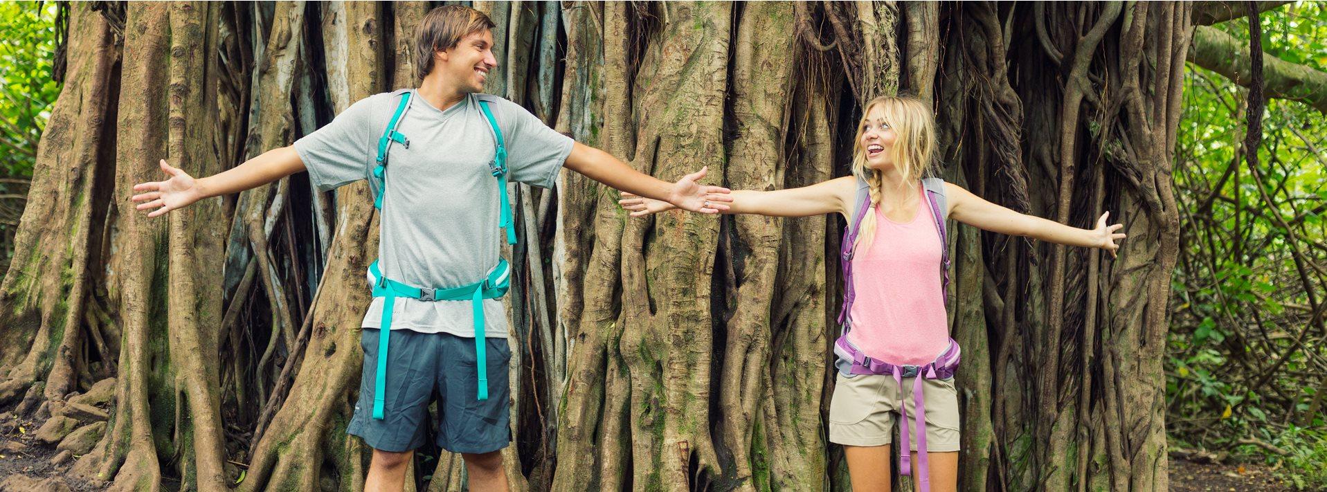 slide tree